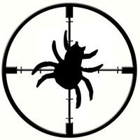 Can Bug Bounty Programs Halt the Rise of APTs?