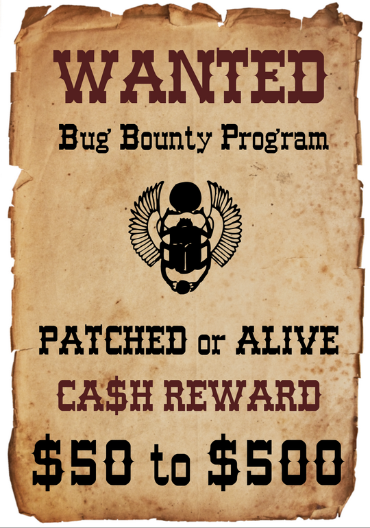 Bug Bounties: Risk and Reward