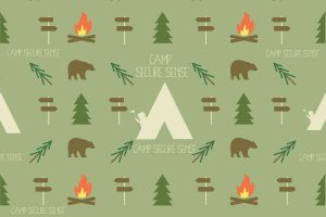What is Camp Secure Sense